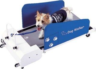 Illustration for article titled Dog Walker Treadmill