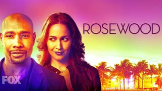 Morris Chestnut and Jaina Lee Ortiz star in RosewoodFox