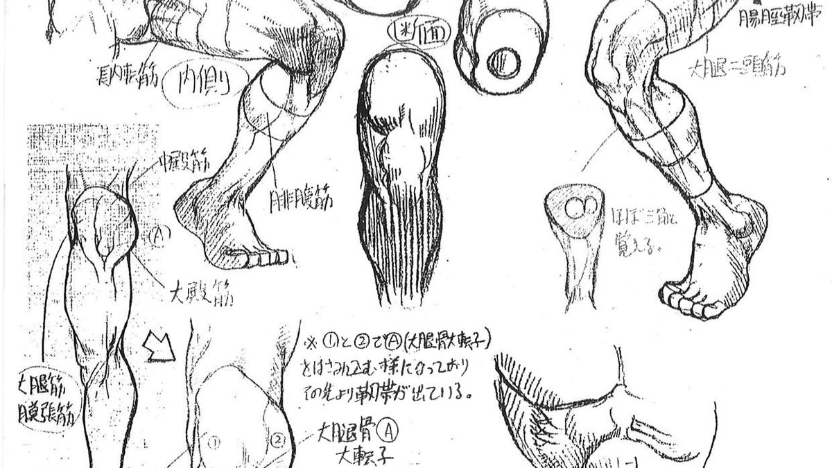 Capcom\'s Human Anatomical Reference For Artists