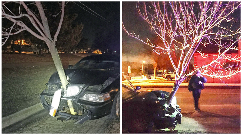Illustration for article titled Massive Tree Embedded In Car's Grille Tips Cops Off To Possible Drunk Driver
