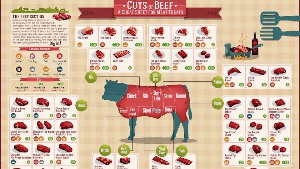 18jg2abbe4yqwjpg here is a chart showing all the different cuts of beef