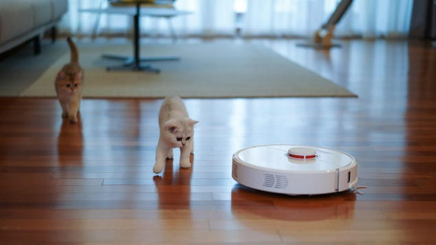 The Robot Vacuums Moms (and Pet Owners) Love