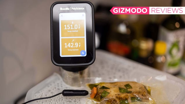 I Love This Sous Vide On Steroids, Even Though It s Overkill
