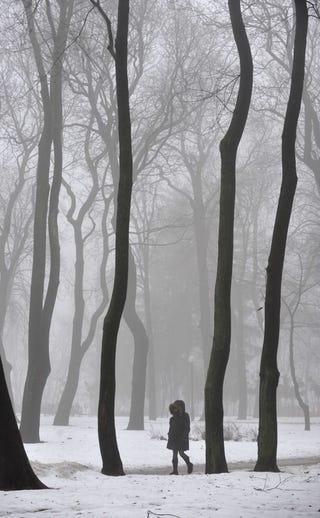 Illustration for article titled Walking In A Winter Wonderland