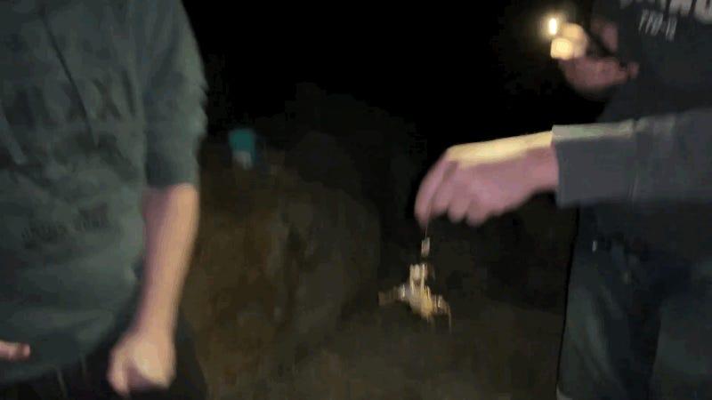 Estos dos turistas jugando con un pulpo en Australia no saben lo afortunados que son de seguir con vida