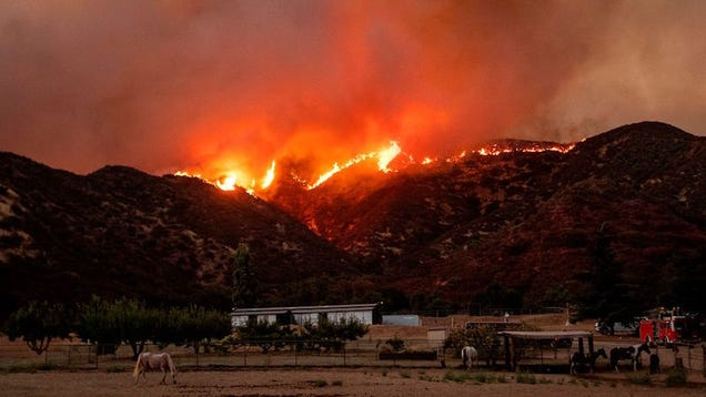 California Is Burning: 20,000-Acre Fire Rages On Uncontained, Forcing Thousands to Evacuate