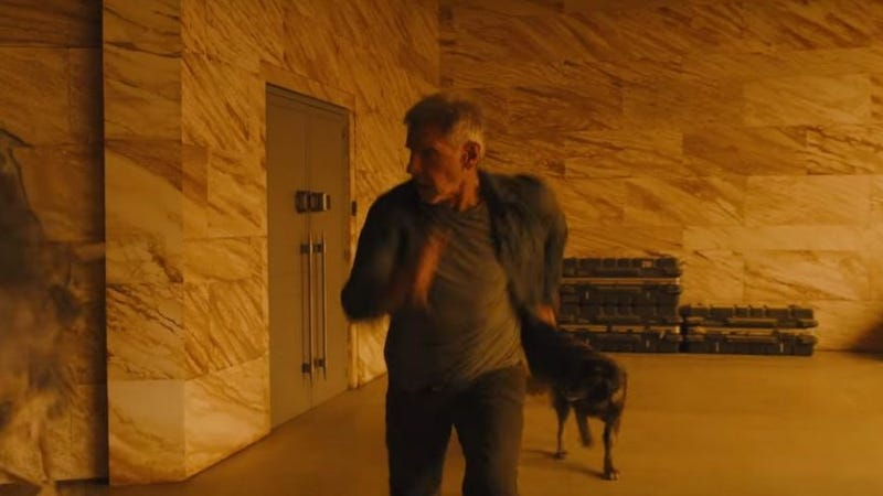 Deckard with his good, good, good so very good yes you are dog.