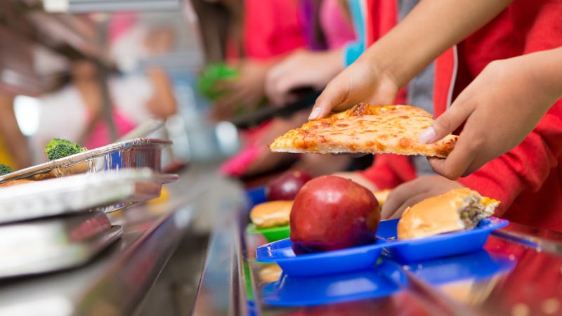 Illustration for article titled School lunch admin stole more than $250K from cafeteria funds, including students' accounts