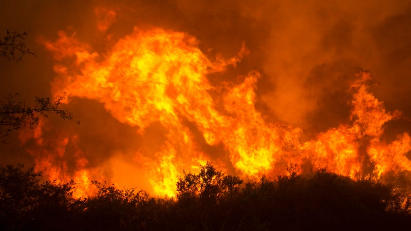 Flames from a wildfire burn Monday, Oct. 9, 2017, in Napa, Calif. The fire is one of several burning across Northern California. Photo: AP