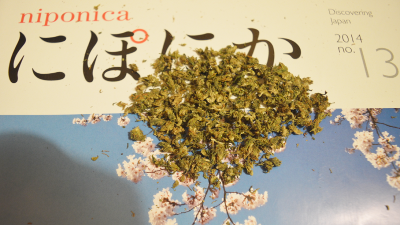 Illustration for article titled Por qué Japón es tan estricto con las drogas