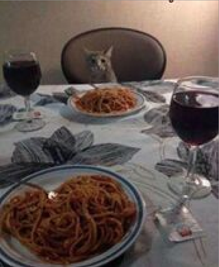 Illustration for article titled How my Valentine's day dinner will probably look like.