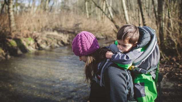 Save Over $70 On One of the Best Kid Carriers Out There