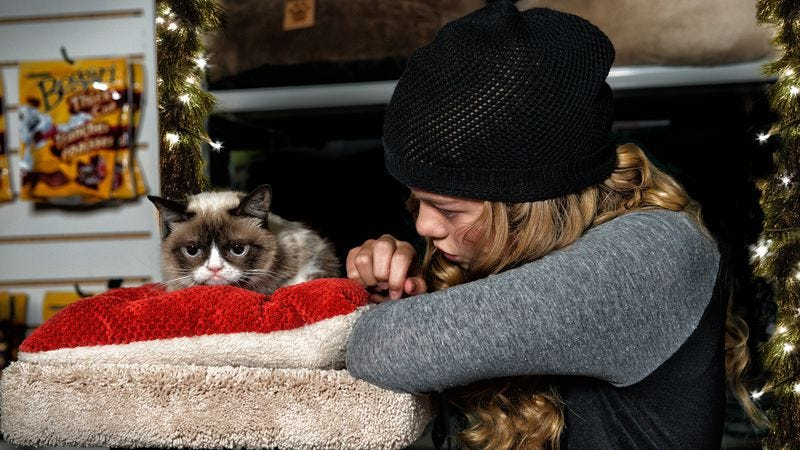 Illustration for article titled Grumpy Cat's Worst Christmas Ever got terrible ratings, but lots of tweets
