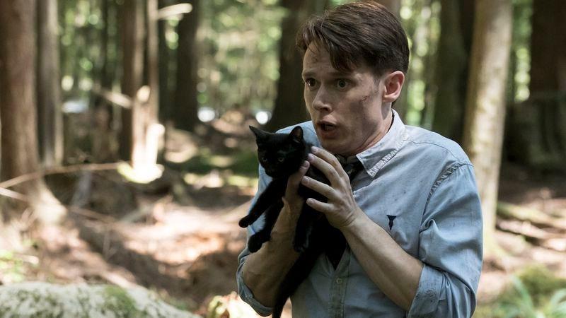 Samule Barnett, kitten