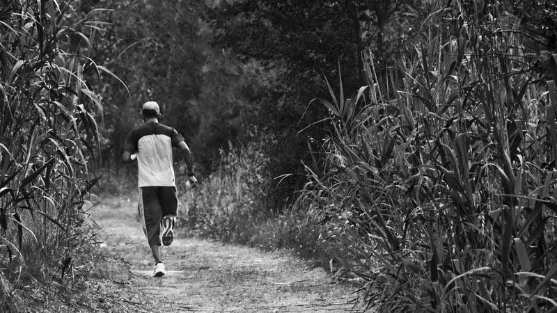 Take Planned Breaks to Overcome Exercise Plateaus