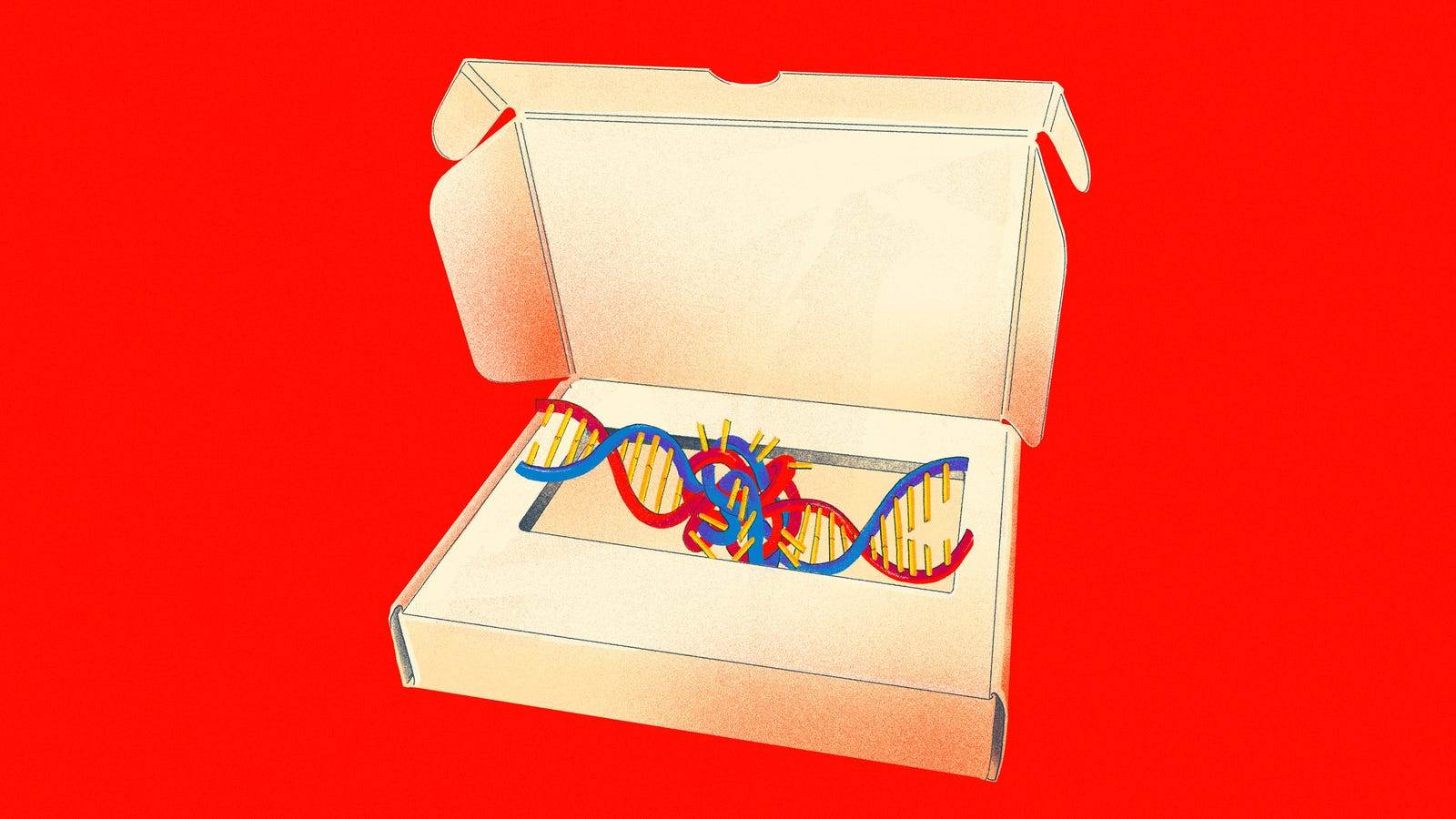 How DNA Testing Botched My Family's Heritage, and Probably