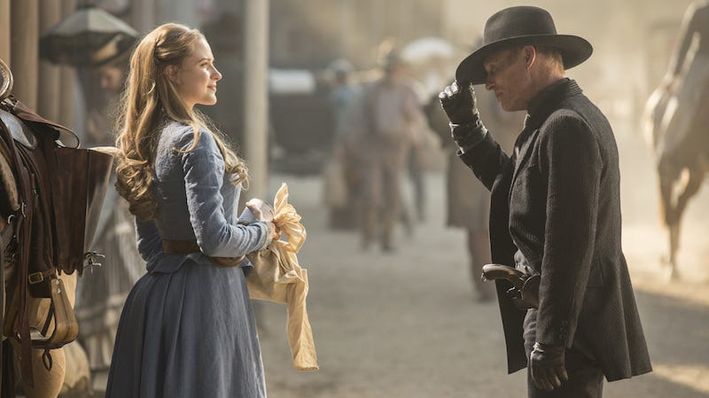 Illustration for article titled 15 Questions We Have After the Westworld Premiere