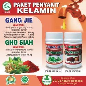 Obat Tradisional Sipilis di Jogja Kabupaten Sleman Daerah Istimewa Yogyakarta