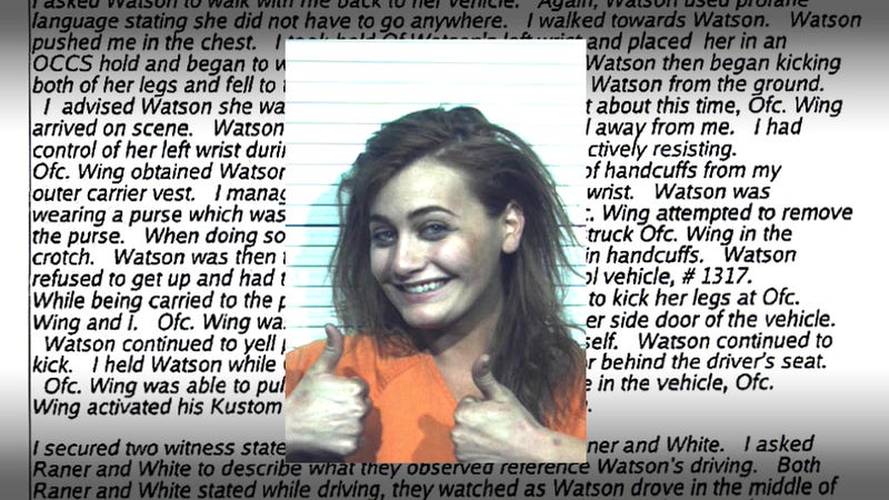 Illustration for article titled Drunk woman knees cop in groin and smiles for epic mug shot
