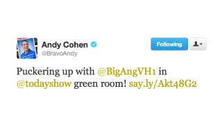 Illustration for article titled Lucky Duck Andy Cohen Gets to Spend Quality Greenroom Time with Big Ang