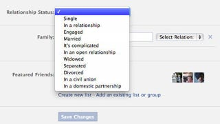 "Illustration for article titled Facebook Adds ""Civil Union"" and ""Domestic Partnership"" Relationship Status Options"