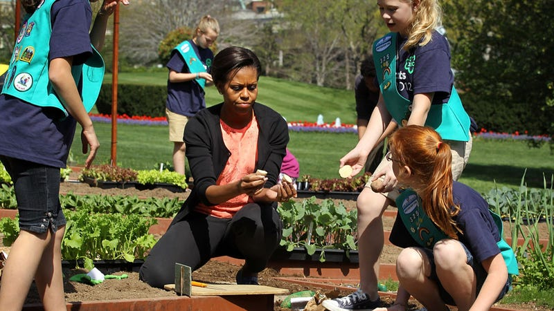 Illustration for article titled Michelle Obama Welcomes Dangerously Radical Girl Scouts Into Her Garden
