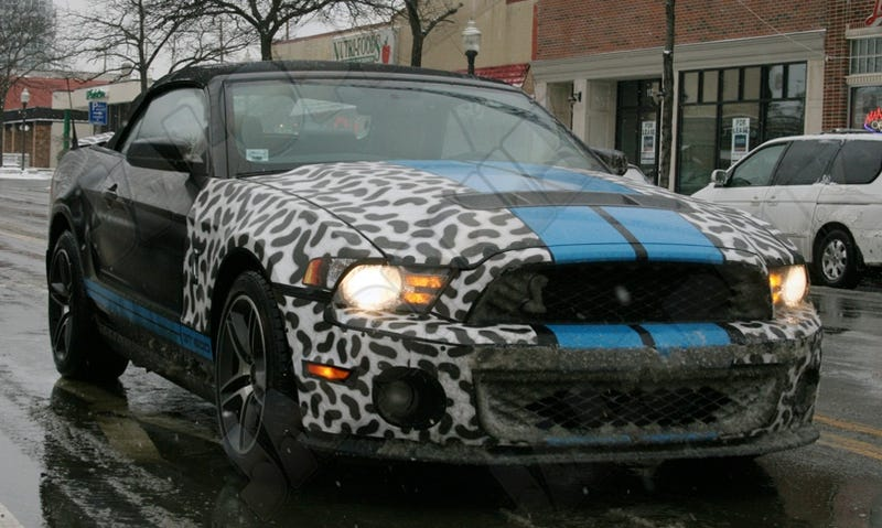 Illustration for article titled 2010 Shelby GT500