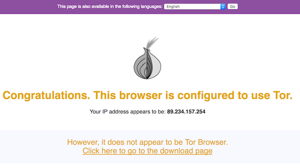 How to Anonymize Your Browsing with a Tor-Powered Raspberry
