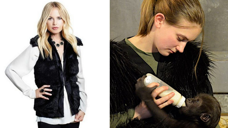 Illustration for article titled Baby Gorilla Insists on Custom Faux Fur Vests, Shockingly Not from Rachel Zoe's Line