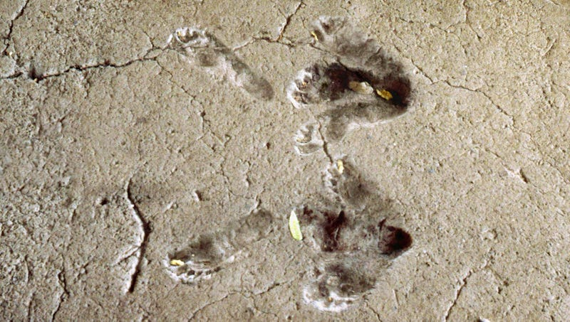 Illustration for article titled Recently Discovered 13,000-Year-Old Footprints Reveal Humans Danced The Charleston Earlier Than First Thought