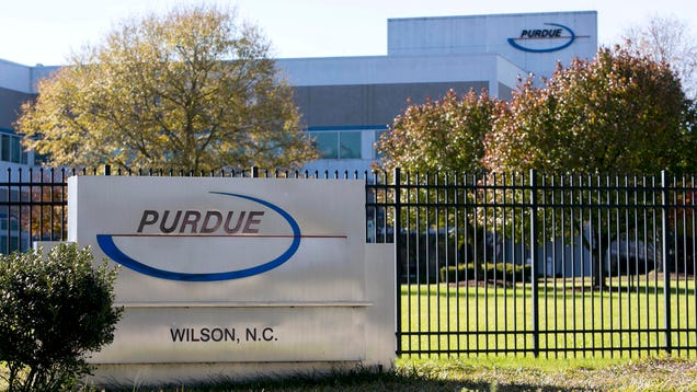 Purdue Pharma Reports Opioid Deaths Falling Short Of Quarterly Goals