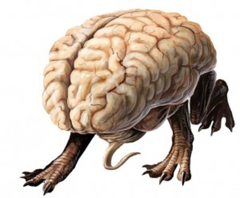 Fifty Shades of Gray Matter: The Most Malevolent Brain Monsters