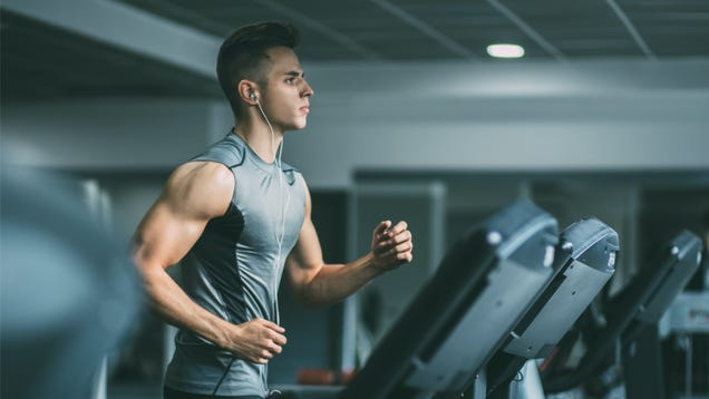 Does the Cardio  Interference Effect  Really Slow Your Gains?
