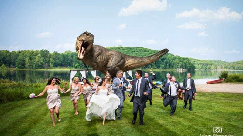 Illustration for article titled Jeff Goldblum participated in a couple's Jurassic Park-themed wedding photo