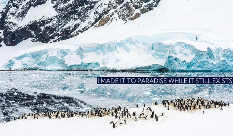 Illustration for article titled The Time to Go to Antarctica Is Now (And Here's How for Half the Price)