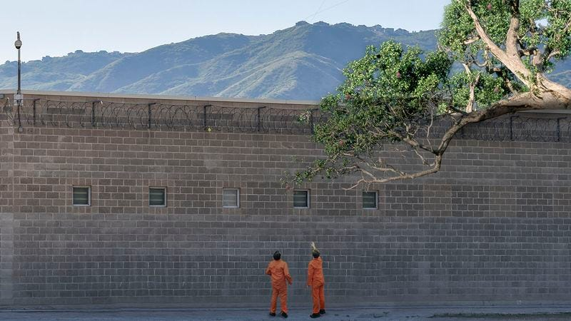 Illustration for article titled Progress: This Prison Will Replace Solitary Confinement With A Bountiful Fig Tree Just Maddeningly Out Of Reach