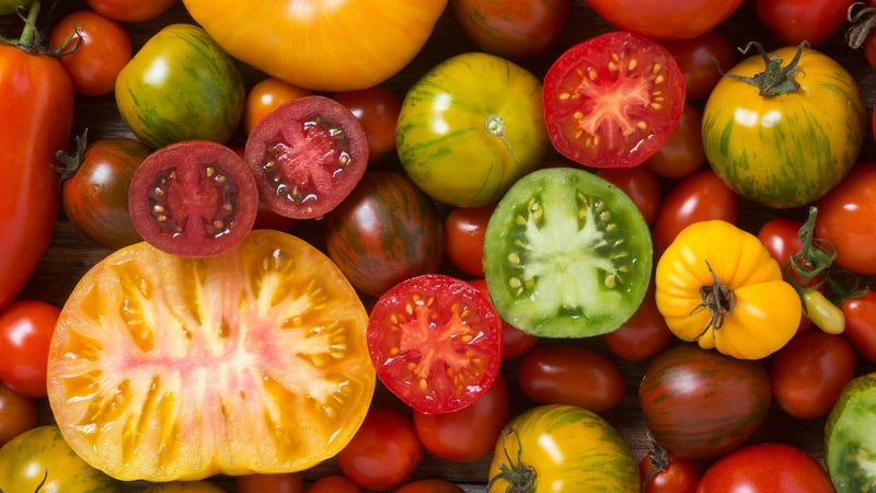 Illustration for article titled The best uses for summer tomatoes, beyond BLTs