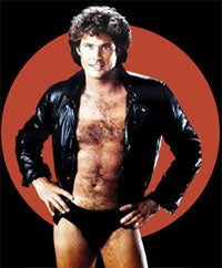 Illustration for article titled David Hasselhoff To Be Playable In PAIN