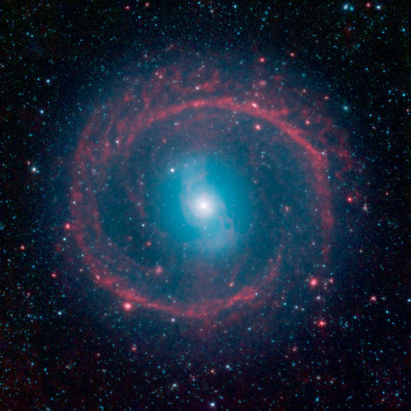 Illustration for article titled A Halo Of Young Stars Rings This Galaxy In Bright Infrared Light