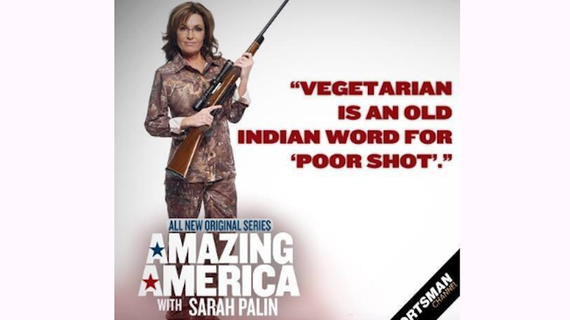 Illustration for article titled Sarah Palin Thinks She'd Be Perfect For The View