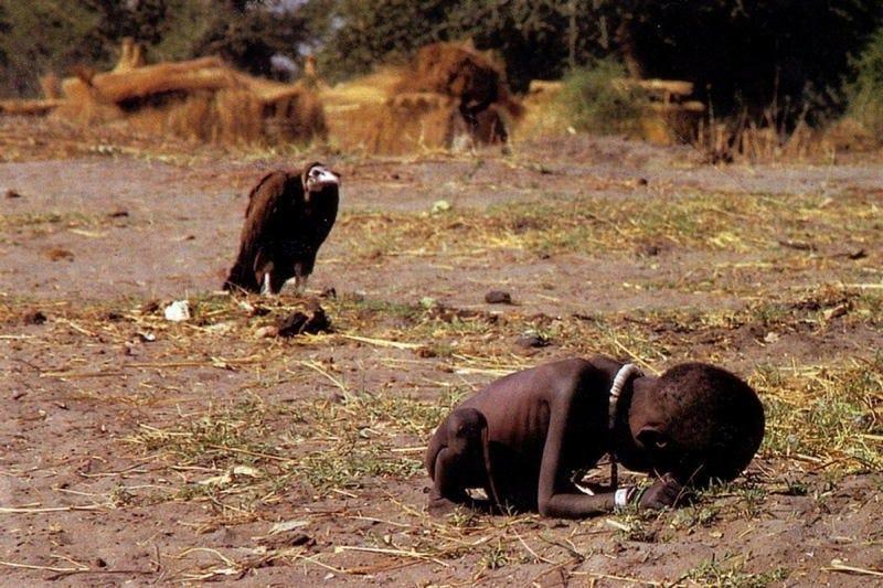 Illustration for article titled Qué ocurrió realmente después de esta desgarradora instantánea: la niña famélica y el buitre esperando