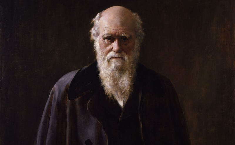Illustration for article titled New Theory Suggests Charles Darwin Suffered from Lyme Disease