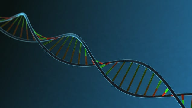 Scientists May Have Found a Genetic Risk Factor for Erectile Dysfunction
