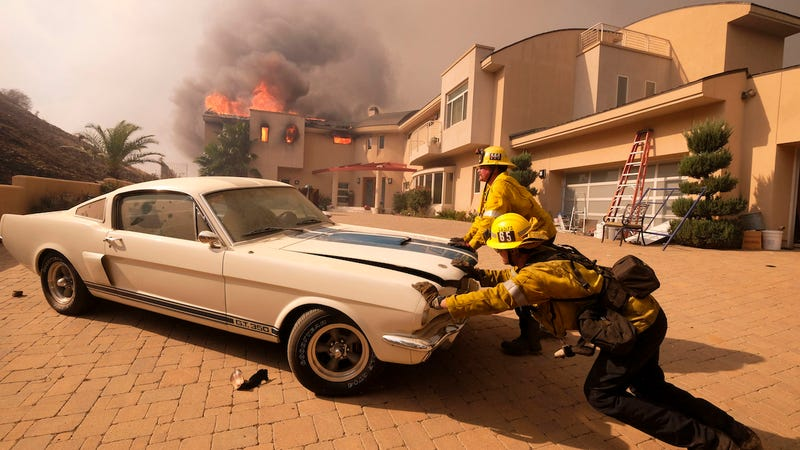 Illustration for article titled Firefighters saving a classic Shelby GT350 from a wildfire in Malibu