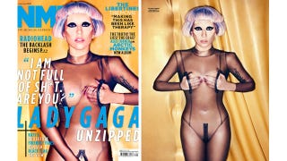 Illustration for article titled Lady Gaga Is 100% Organic, Not Manufactured