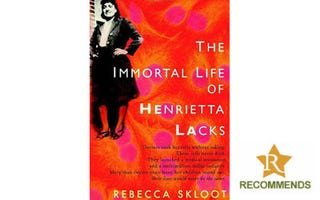 Illustration for article titled The Root Recommends: 'The Immortal Life of Henrietta Lacks'