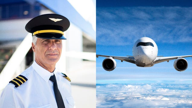 Pilot And Plane Look More Like Each Other With Every Passing Day