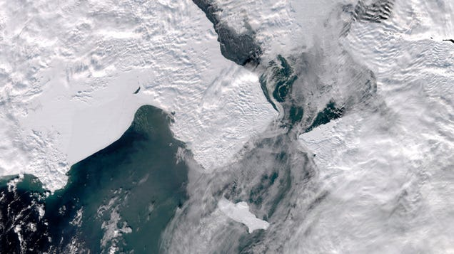 The Climate Crisis Is Causing  Dramatic  Changes in the Pacific Arctic