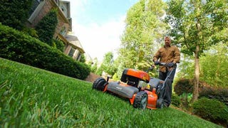 Illustration for article titled Maintain Your Curb Appeal with These Yard Maintenance Tips