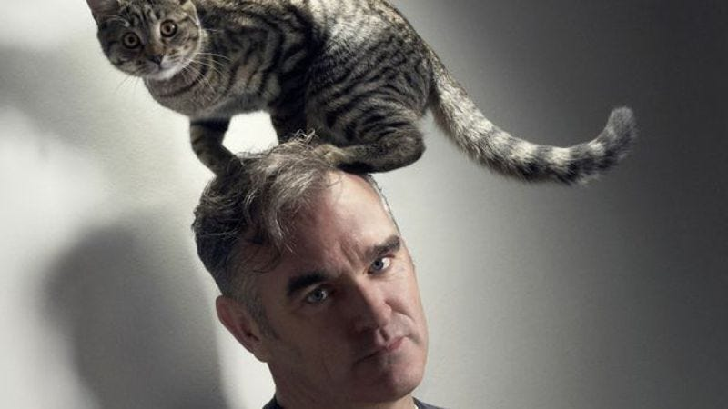 Illustration for article titled Morrissey announces a few U.S. tour dates (and a lot of South American dates)